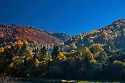 Jesienny krajobraz, okolice Kro?cienka