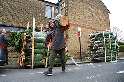 © Licensed to London News Pictures. 02/12/2020. London, UK. A man carries a real Christmas tree in north London as COVID-19 lockdown restrictions are lifted. From today, 2 December, England returns to tiered COVID-19 restrictions, allowing non-essential businesses to re-open. Photo credit: Dinendra Haria/LNP
