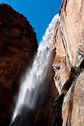 A seasonal waterfall plunges from Weeping Rock in Zion National Park, Springdale, Utah, USA. The North Fork of the Virgin River carved spectacular Zion Canyon through reddish and tan-colored Navajo Sandstone up to half a mile (800 m) deep and 15 miles (24 km) long. Uplift associated with the creation of the Colorado Plateaus lifted the region 10,000 feet (3000 m) starting 13 million years ago. Zion and Kolob canyon geology includes 9 formations covering 150 million years of mostly Mesozoic-aged sedimentation, from warm, shallow seas, streams, lakes, vast deserts, and dry near-shore environments. Mormons discovered the canyon in 1858 and settled in the early 1860s. U.S. President Taft declared it Mukuntuweap National Monument in 1909. In 1918, the name changed to Zion (an ancient Hebrew name for Jerusalem), which became a National Park in 1919. The Kolob section (a 1937 National Monument) was added to Zion National Park in 1956. Unusually diverse plants and animals congregate here where the Colorado Plateau, Great Basin, and Mojave Desert meet.