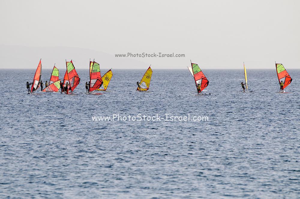 Israel, Eilat windsurfers in the bay of Aqaba