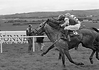 Lady's Day at Punchestown Racecourse, Kildare, 23/04/1997 (Part of the Independent Newspapers Ireland/NLI Collection).