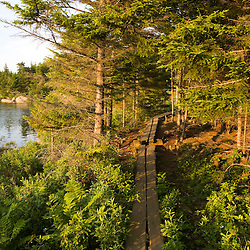 """A wooden walkway next to """"The Bowl"""" in Maine's Acadia National Park.  The Bowl Trail near the Beehive."""