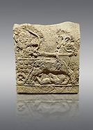 Picture & image of Hittite relief sculpted orthostat stone panel of Long Wall Basalt, Karkamıs, (Kargamıs), Carchemish (Karkemish), 900 - 700 BC. Anatolian Civilizations Museum, Ankara, Turkey.<br /> <br /> Chariot. One of the two figures in the chariot holds the horse's headstall while the other throws arrows. There is a naked enemy with an arrow in his hip lying face down under the horse's feet. It is thought that this figure is depicted smaller than the other figures since it is an enemy soldier. The tower part of the orthostat is decorated with braiding motifs.<br /> <br /> On a gray background. .<br />  <br /> If you prefer to buy from our ALAMY STOCK LIBRARY page at https://www.alamy.com/portfolio/paul-williams-funkystock/hittite-art-antiquities.html  - Type  Karkamıs in LOWER SEARCH WITHIN GALLERY box. Refine search by adding background colour, place, museum etc..<br /> <br /> Visit our HITTITE PHOTO COLLECTIONS for more photos to download or buy as wall art prints https://funkystock.photoshelter.com/gallery-collection/The-Hittites-Art-Artefacts-Antiquities-Historic-Sites-Pictures-Images-of/C0000NUBSMhSc3Oo
