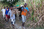 15 people carry Felisse, a 72 years old woman  on a bed frame padded with cardboard a steep hill, to get to a cholera  clinic. The Real Hope for Haiti  Cholera Clinic in Cazel is 11 kilometers off the main road passing through Cabaret, north of Port-au-Prince is run by missionaries.