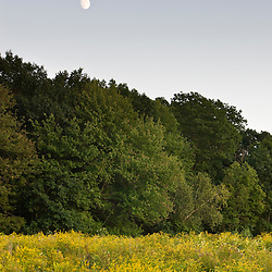 The moon rises over a field at the Pell Farm in Grafton, Massachusetts.