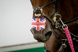 Tattersall Gemma, GBR, Jalapeno<br /> CHIO Aachen 2019<br /> © Hippo Foto - Sharon Vandeput<br /> 20/07/19
