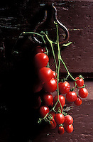 Italie - Toscane - Province de Florence - Tomates cerises en grappe - poignée de porte. // Italy, Tuscany, Florence province, Tomato at the door.