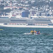Wellington Harbour (NZL)