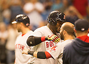 MLB: SEP 12 Red Sox at Rays. David Ortiz of the Red Sox, Hits his 500th Home Run in the 5th Inning and celebrates with his team mate Dustin Pedroia.