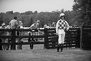 Sights from the 2013 Queens Cup Steeplechase - April 27, 2013: Paddy Young.