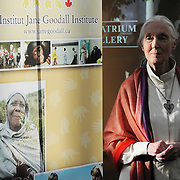 Dr. Jane Goodall waits patiently at a private reception during the Youth 4 Action conference in Ottawa, Canada.