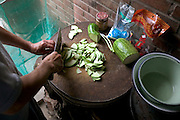 (MODEL RELEASED IMAGE). Chopping squash for a lunch of squash, cauliflower, squash, mushrooms and green onions, and chicken at the Cuis of Weitaiwu village, Beijing Province. The round chopping block is made from a slice of tree trunk, a common practice in China. (Supporting image from the project Hungry Planet: What the World Eats.)