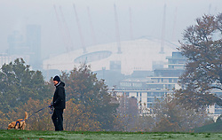 © Licensed to London News Pictures. 06/11/2020.  <br /> Greenwich, UK. A dog walkers. People out and about in Greenwich Park, London making the most of their lockdown exercise on a cold November morning. Photo credit:Grant Falvey/LNP