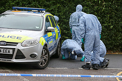 © Licensed to London News Pictures. 05/08/2019. London, UK. Crime scene investigators carries out the search on Waltheof Gardens in Tottenham, north London following a death of a woman at an address in Waltheof Gardens. Police were called around 10:45 am on 4 August 2019 where the body of an 89-year-old woman was found. According to the police one or more suspects gained entry to the woman's house between Saturday (3 August) evening and Sunday (4 August) morning. Photo credit: Dinendra Haria/LNP