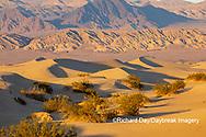 62945-00302 Sand Dunes in Death Valley Natl Park CA
