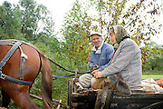 Romania, Peasant coupe in a horse and cart