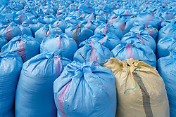 Blue and yellow sacks of harvested corn, Morocco