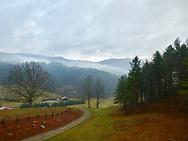 P1, Foggy Morning Mountain View