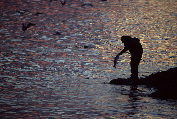Stock photo of the silhouette of man holding a fish that he just caught from the shore at sunset