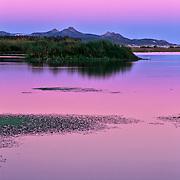 San Jose Estuary at sunset. San Jose del Cabo. Baja California Sur, Mexico.