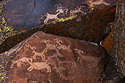 Petroglyphs in Little Petroglyph Canyon, Kern County, California