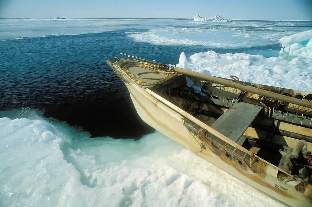 Barrow, Alaska, Umiak with Harpoon ready for launch from sea ice on the Chukchi Sea
