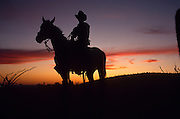 Cowboy on horseback at sunset, Reddington Pass, Tucson, Arizona.©1990 Edward McCain.  All rights reserved.  McCain Photography, McCain Creative, Inc.