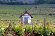 vineyard hut burgundy france