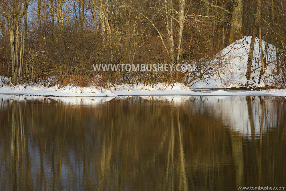 Mamakating, New York -  Trees are reflected in the water at the Bashakill Wildlife Management Area late in the afternoon of Jan. 1, 2013.
