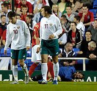 Photo: Richard Lane.<br />England 'B' v Belarus. International Friendly. 25/05/2006. <br />England's Robert Green lies injured.