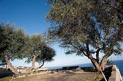 Marina di Castro (Lecce) Situato lungo la costa orientale della penisola salentina, il comune è formato dall'abitato principale di origine medievale, posto su un promontorio a 98 m s.l.m., e dalla parte bassa di Castro Marina, sorta intorno al porto. Centro peschereccio e balneare, vanta origini antiche quale erede della romana Castrum Minervae. Fu una delle prime città del Salento ad essere elevata al rango di contea; fu anche sede vescovile fino al 1818..Testo Wikipedia