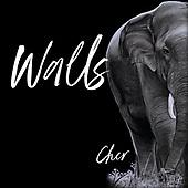 "May 19, 2021 - WORLDWIDE: Cher ""Walls"" Music Single Release"