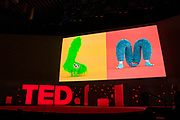 Furry Alphabet video at TED2019: Bigger Than Us. April 15 - 19, 2019, Vancouver, BC, Canada. Photo: Bret Hartman / TED