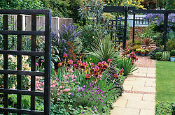 Well planted border. Irises, Lavandula stoechas (french lavender), Ceanothus 'Puget's Blue' and aquilegia with trellis screens, spiky foliage & stone path