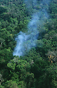 PRIMARY RAINFOREST BURNING, Amazon, near Boavista, northern Brazil, South America. Smoke coming from localised forest fire during dry season. The forest is vulnerable at this time of year to natural and manmade fires. Ecological biosphere and fragile ecosystem where flora and fauna, and native lifestyles are threatened by progress and development. The rainforest is home to many plants and animals who are endangered or facing extinction. This region is home to indigenous primitive and tribal peoples including the Yanomami and Macuxi.