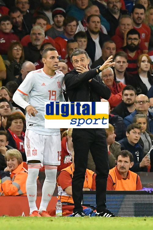 Football - 2018 / 2019 International Friendly - Wales vs. Spain<br /> <br /> Spain manager Luis Enrique on the touchline with sub Rodrigo of Spain, at the Principality Stadium (Millennium Stadium).<br /> <br /> COLORSPORT/WINSTON BYNORTH