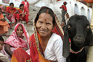Woman and a goat, Varanasi (Benares), Uttar Pradesh, India