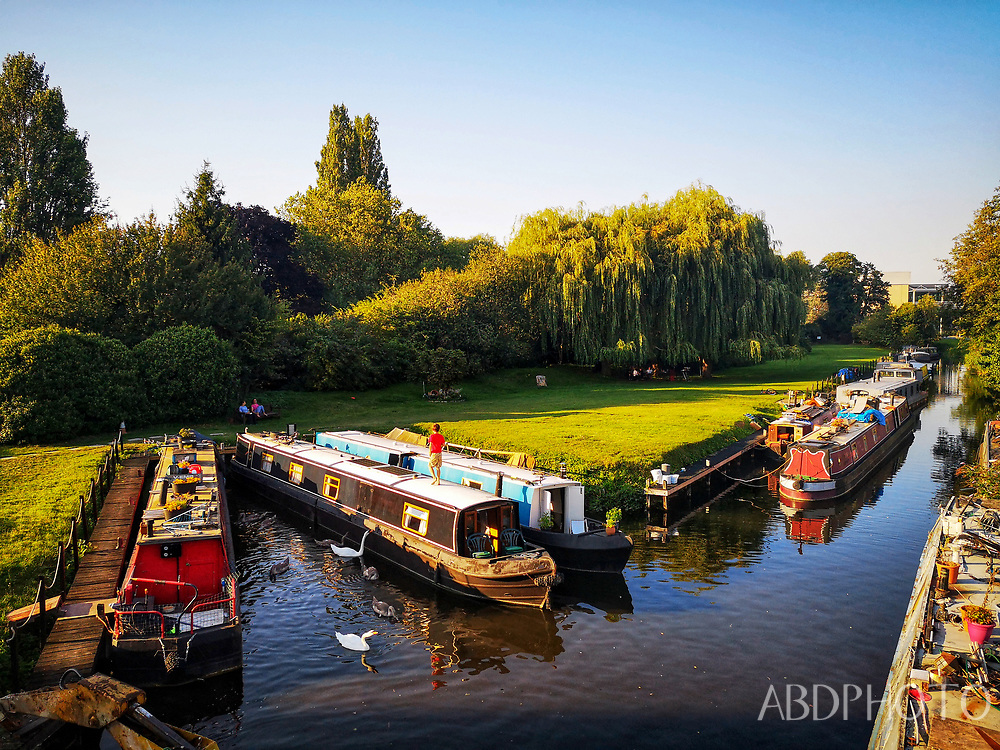 smacap_Bright buckingham palace london england uk