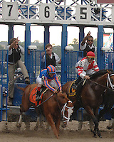 Rags to Riches wins the Belmont Stakes