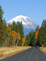 Autumn along a country road with Mount Adams looming above in Klickitat County, WA, USA.