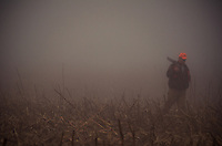 On a foggy December morning a hunter returns empty handed to a meeting point following an unsuccessfull deer drive.