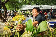 "22 JULY 2013 - PHRA PHUTTHABAT, THAILAND:  Flower vendors set out ""dancing lady ginger"" flowers for people to buy during the Tak Bat Dok Mai at Wat Phra Phutthabat in Saraburi province of Thailand, Monday, July 22. Wat Phra Phutthabat is famous for the way it marks the beginning of Vassa, the three-month annual retreat observed by Theravada monks and nuns. The temple is highly revered in Thailand because it houses a footstep of the Buddha. On the first day of Vassa (or Buddhist Lent) people come to the temple to ""make merit"" and present the monks there with dancing lady ginger flowers, which only bloom in the weeks leading up Vassa. They also present monks with candles and wash their feet. During Vassa, monks and nuns remain inside monasteries and temple grounds, devoting their time to intensive meditation and study. Laypeople support the monastic sangha by bringing food, candles and other offerings to temples. Laypeople also often observe Vassa by giving up something, such as smoking or eating meat. For this reason, westerners sometimes call Vassa the ""Buddhist Lent.""    PHOTO BY JACK KURTZ"