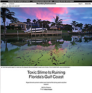 Photo part of photo essay for Bloomberg news- https://www.bloomberg.com/news/features/2018-08-20/toxic-green-slime-and-red-tide-are-ruining-florida-s-gulf-coast
