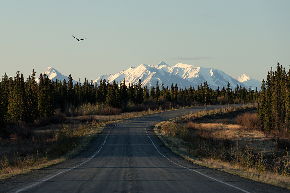 The road through the Yukon on an early spring morning