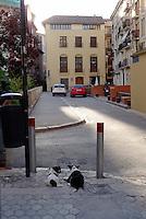 Fra Valencia