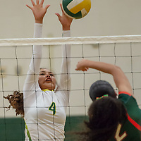 Hawks hitter Jalena Begay (4), defends the net against Bears middle hitter Sieyanne Platero (2), in Thoreau Tuesday night.