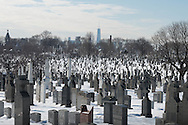 New York, the Calvary cemetery in winter covered with snow. the cemetery has an incredible `view on Manhattan cityscape.