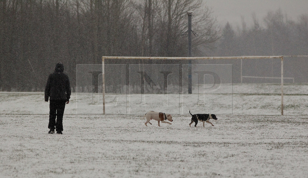© licensed to London News Pictures. Manchester, UK  04/02/2012. A man plays with his dogs in the snow at Crossley Playing Fields in Chadderton, Manchester. Please see special instructions for usage rates. Photo credit should read Joel Goodman/LNP