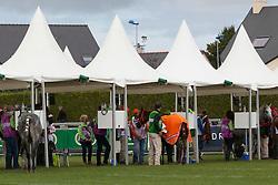 Vet inspection<br /> Endurance - Alltech FEI World Equestrian Games™ 2014 - Normandy, France.<br /> © Hippo Foto Team - Jantien Van Zon