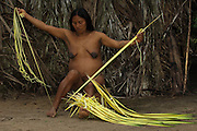 Huaorani Indian woman - Wenyena Baiwa working with chambira. Gabaro Community. Yasuni National Park.<br /> Amazon rainforest, ECUADOR.  South America<br /> This is fibre extraced from a palm leaf. It is boiled and sun bleached before being made into string. The thickness depends on usage. Thin string is used for shigras - string bags and thicker string for hammocks.<br /> This Indian tribe were basically uncontacted until 1956 when missionaries from the Summer Institute of Linguistics made contact with them. However there are still some groups from the tribe that remain uncontacted.  They are known as the Tagaeri & Taromenani. Traditionally these Indians were very hostile and killed many people who tried to enter into their territory. Their territory is in the Yasuni National Park which is now also being exploited for oil.
